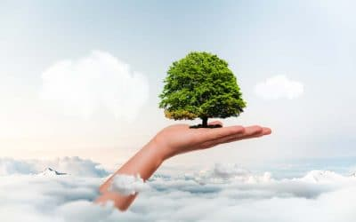 Lifestyle Changes to Save the Earth from Good Housekeeping
