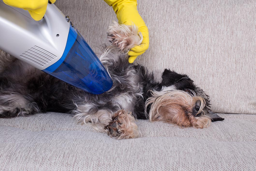 5 Tips for Summer Home Cleaning